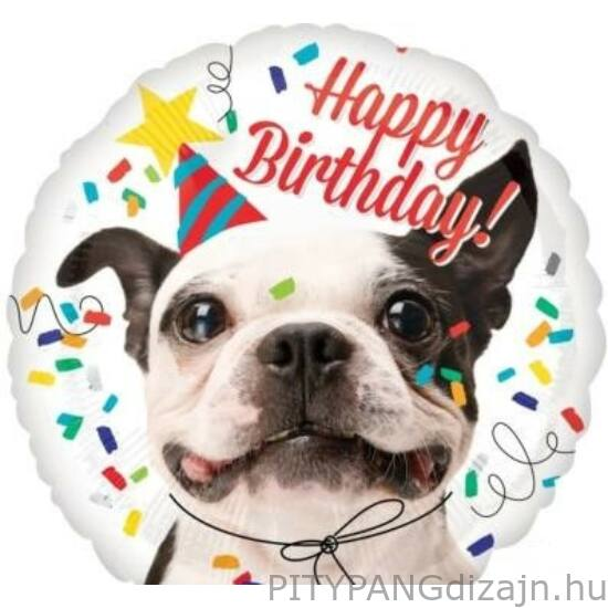 Lufi / Anagram / Happy Birthday Dog - Francia Bulldog Kutya Fólia Léggömb