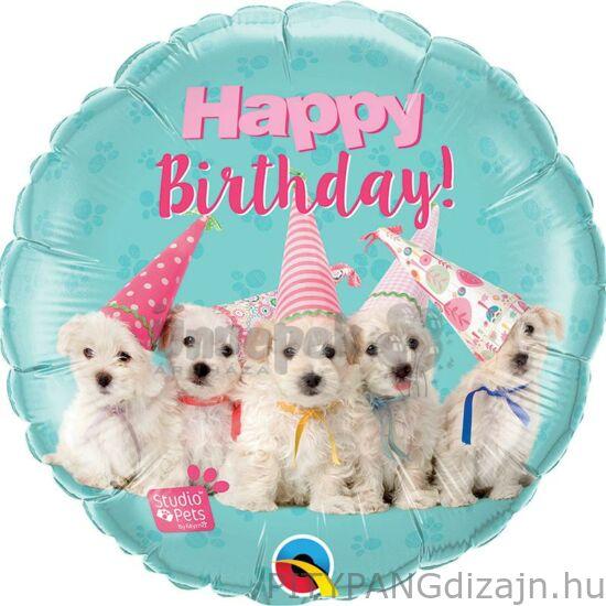 Lufi / Qualatex / Studio Pets - Birthday Puppies Szülinapi Fólia Lufi